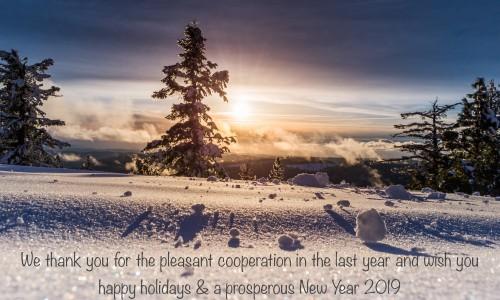 Frohe Weihnachten und einen guten Rutsch in neue Jahr